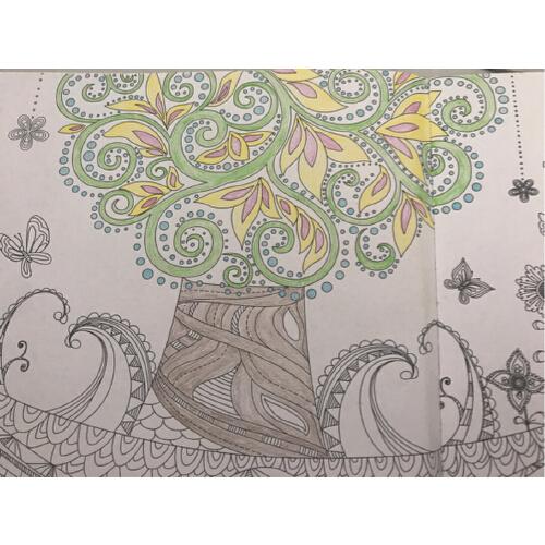 手繪減壓涂色神奇 時間旅程 神秘花園 童話夢境 奇幻森林 全套4冊